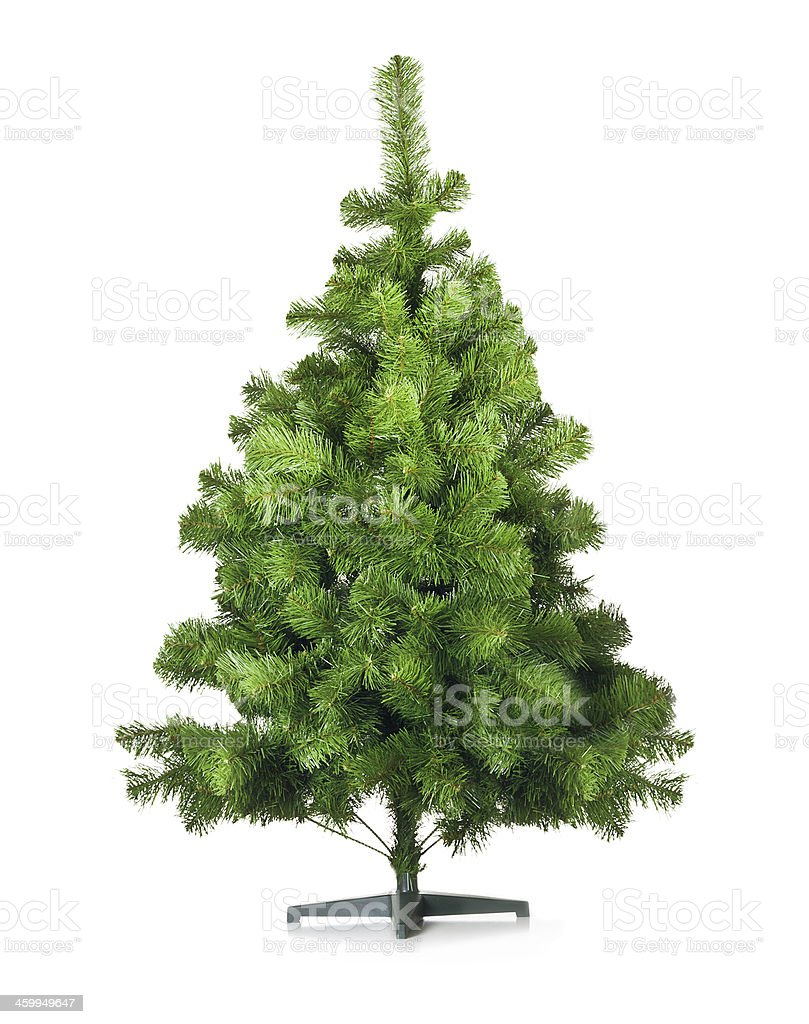 Artificial pine tree stock photo