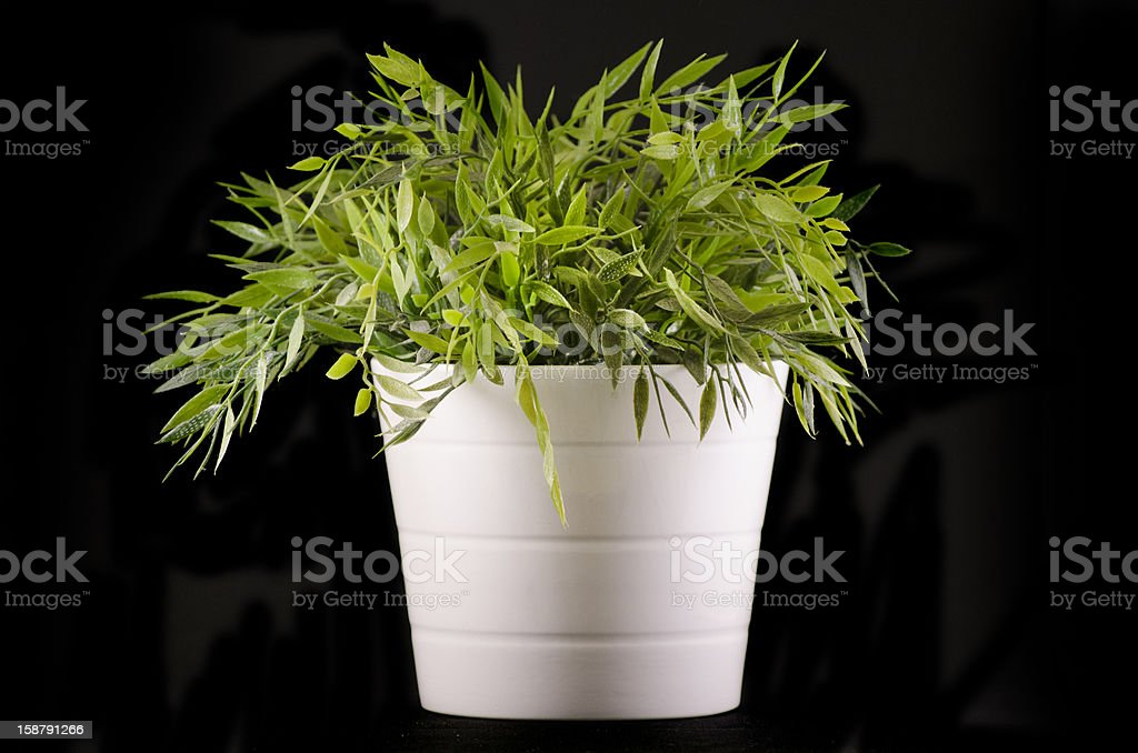 Artificial plant. royalty-free stock photo