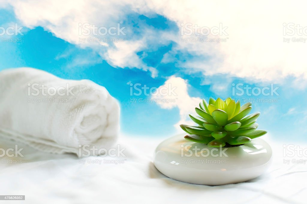 Artificial plant putting on white cloths royalty-free stock photo