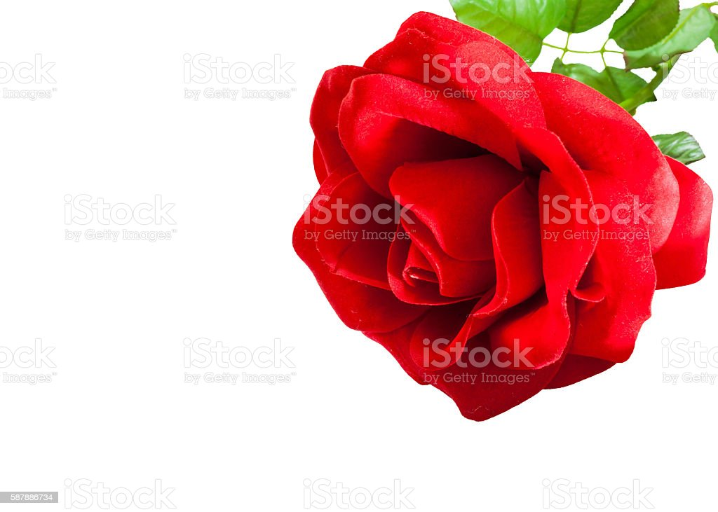 artificial red rose of love stock photo