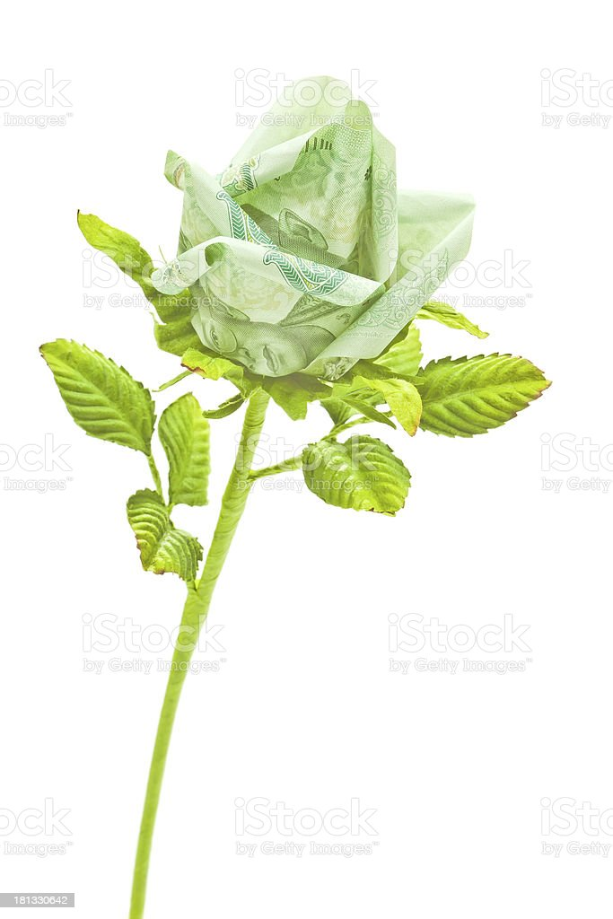 Artificial roses royalty-free stock photo