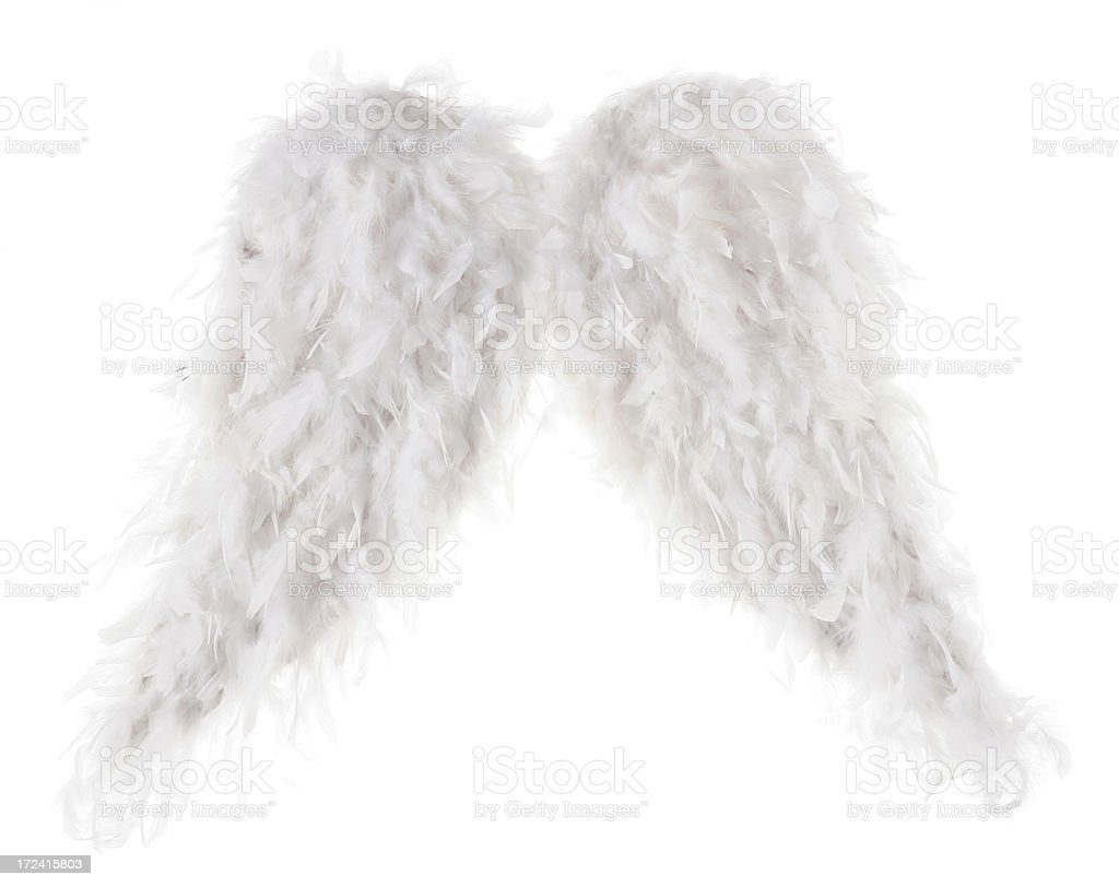 artificial wings on white XXL royalty-free stock photo