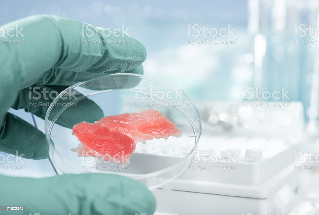 Artificially grown meat royalty-free stock photo
