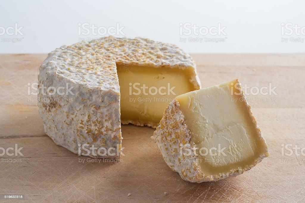 Artisanal goat cheese stock photo