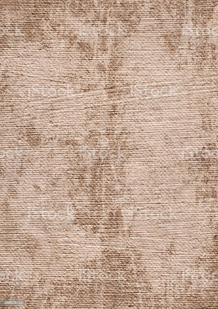 This Hi-Res Scan of Beige Primed Artist\'s Linen Duck Canvas,...