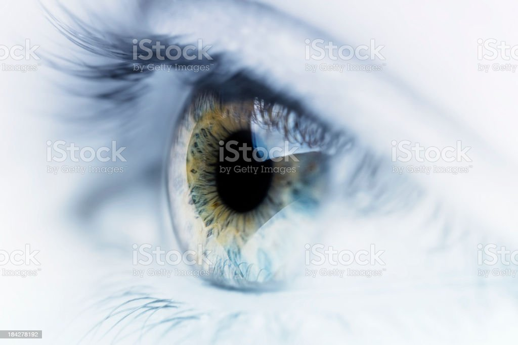 Artistic Eye stock photo