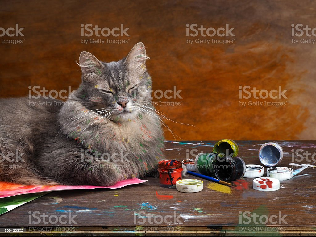 Artistic mess with the cat-artist. stock photo