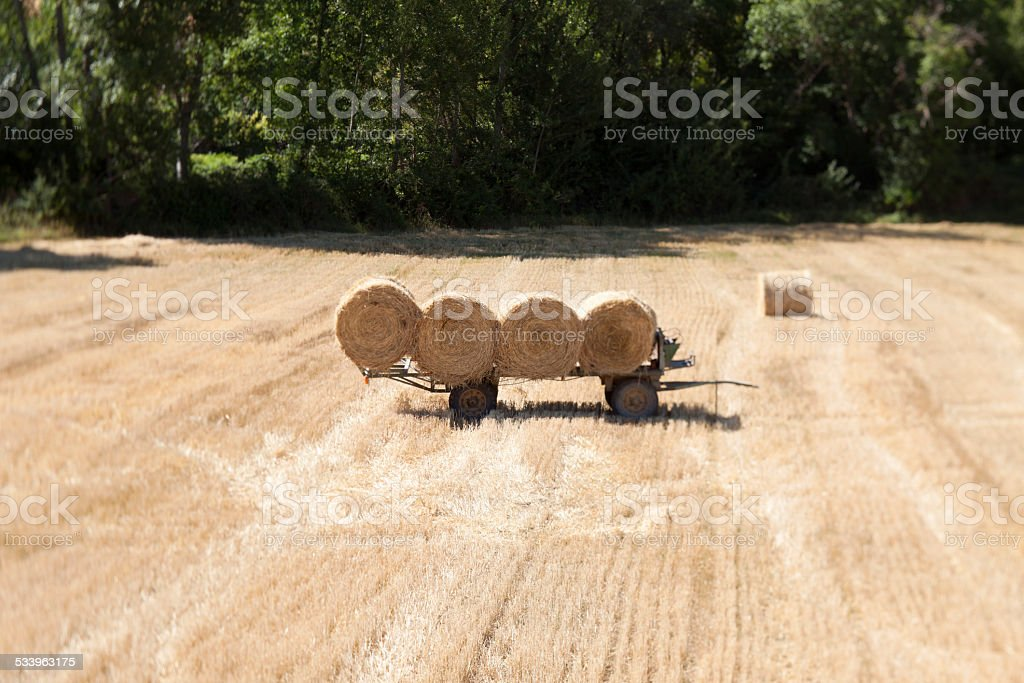 Artistic picture of straw bales in Burgos, Castile (Spain) stock photo