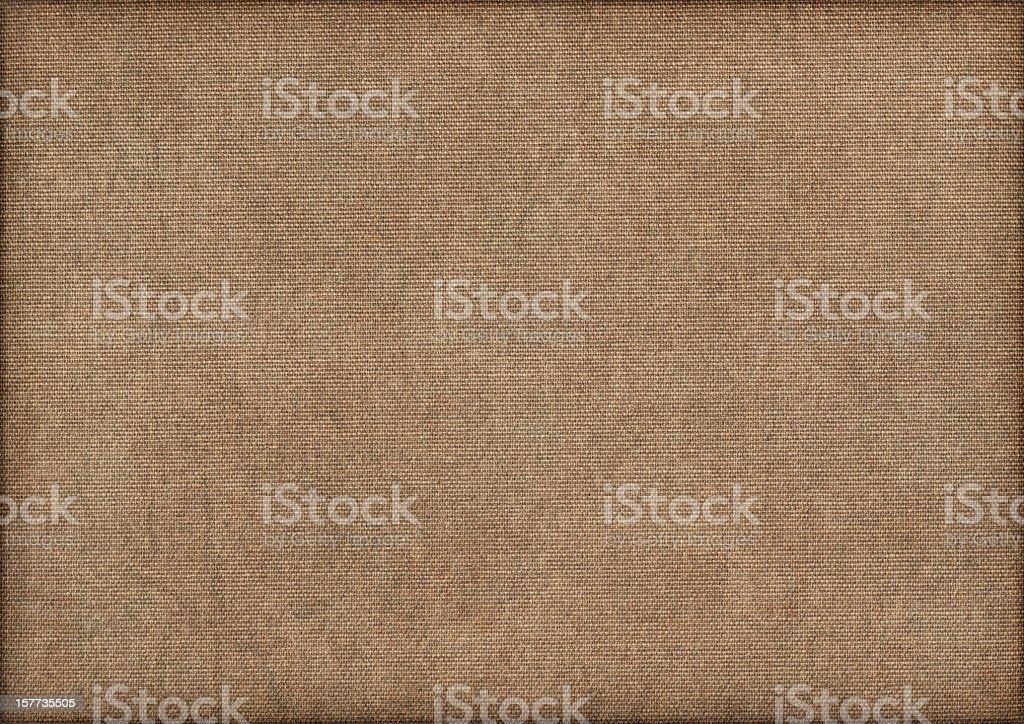 Artist's Hi-Res Cotton Duck Canvas Mottled Vignette Grunge Texture stock photo