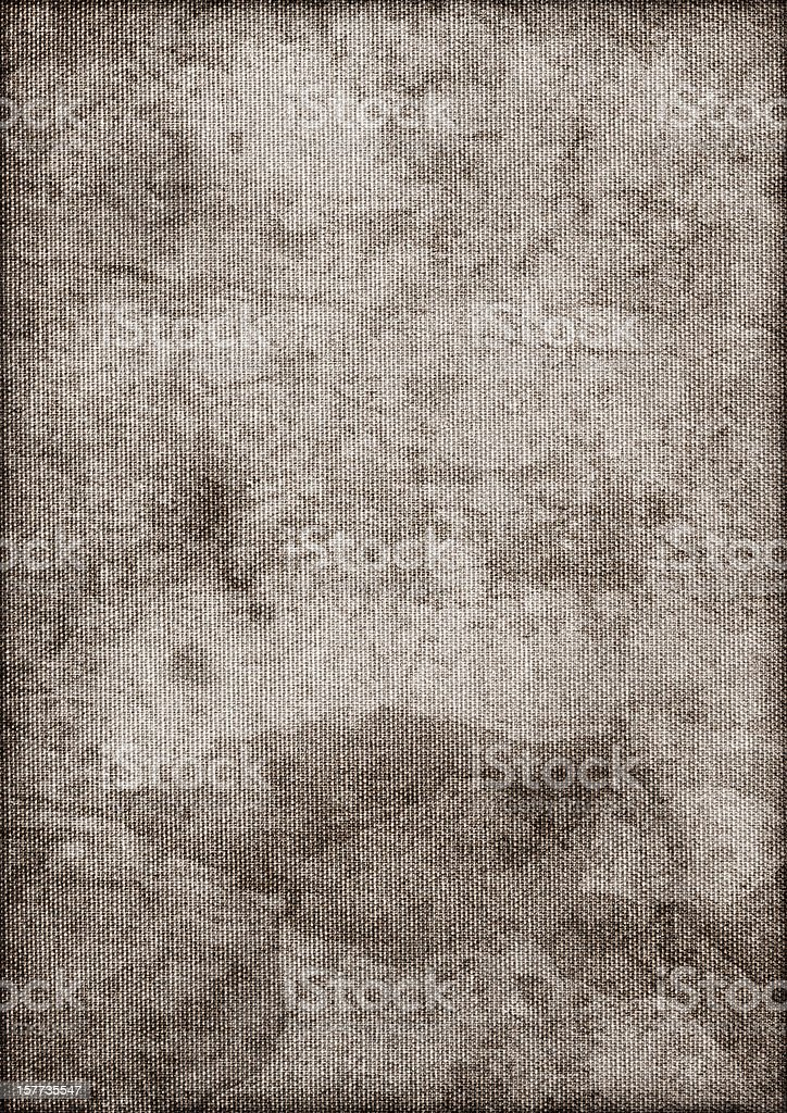 Artist's Hi-Res Cotton Duck Canvas Mottled Vignette Grunge Texture stock photo