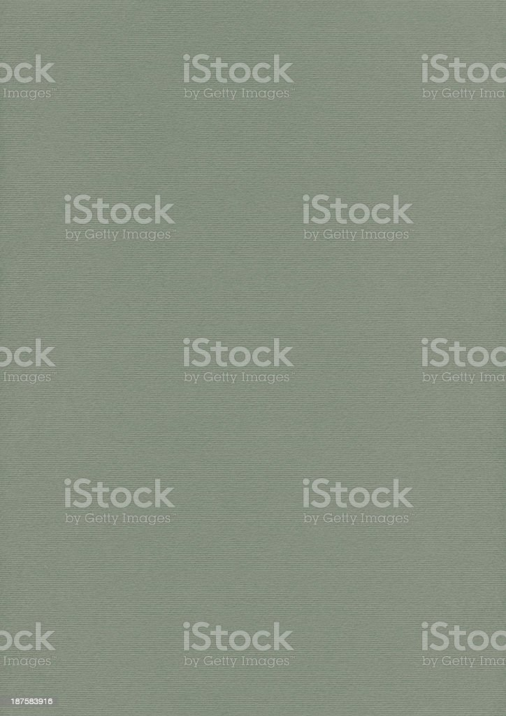 Artist's Olive Green Pastel Paper Coarse Grain Grunge Texture royalty-free stock photo