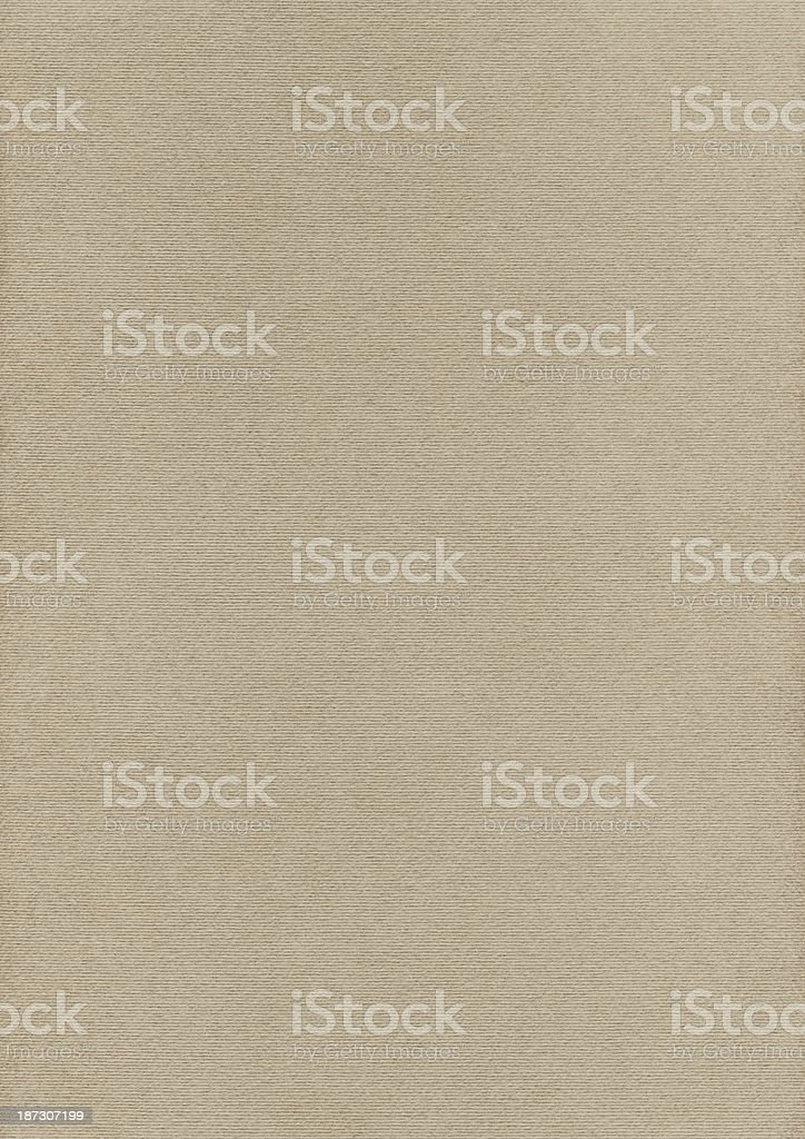 Artist's Pale Olive Green Pastel Paper Coarse Grain Grunge Texture royalty-free stock photo