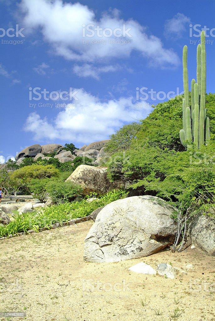 Aruba Rock Formations royalty-free stock photo