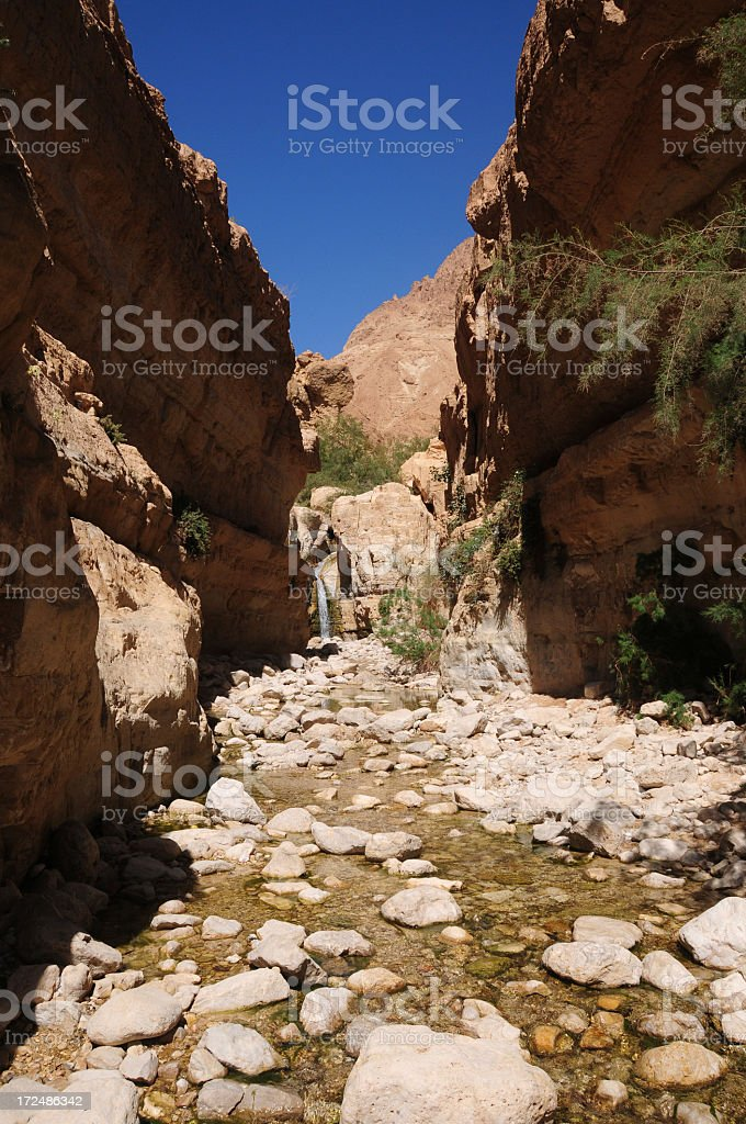 Arugot River Oasis, Ein Gedi, Israel stock photo