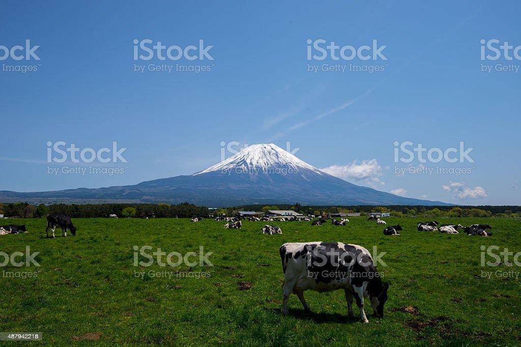 Asagiri stock photo