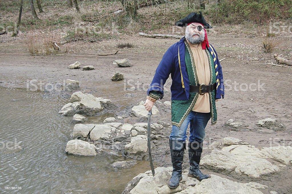 Ashore Pirate stock photo