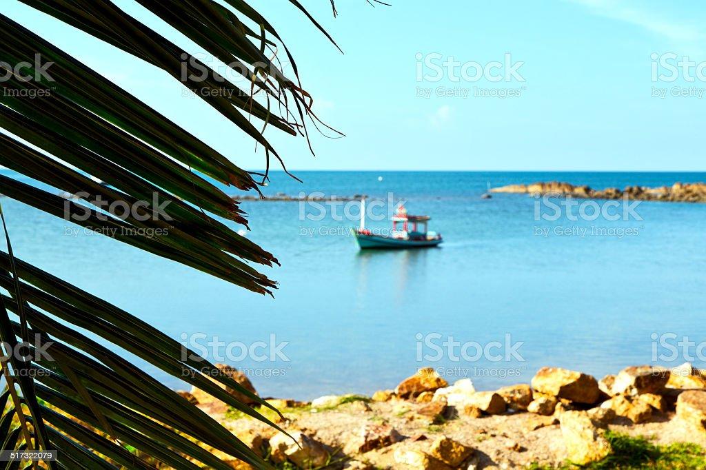 asia   kho phangan     beach    rocks  palm and south china sea stock photo