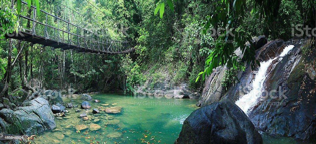 Asia Thailand jungle landscape stock photo