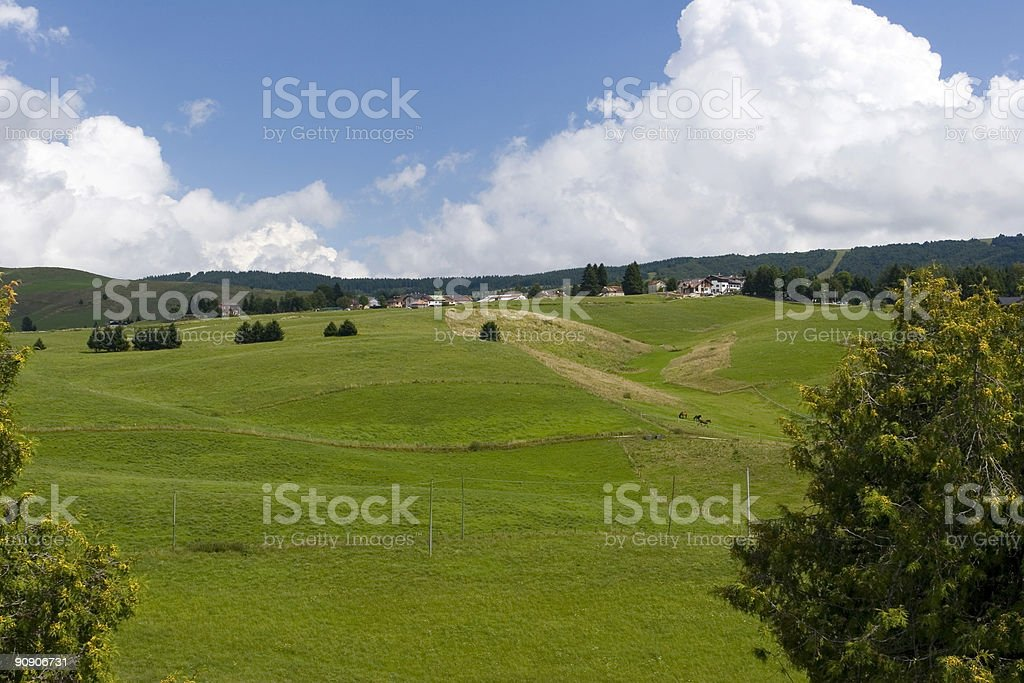 Asiago royalty-free stock photo