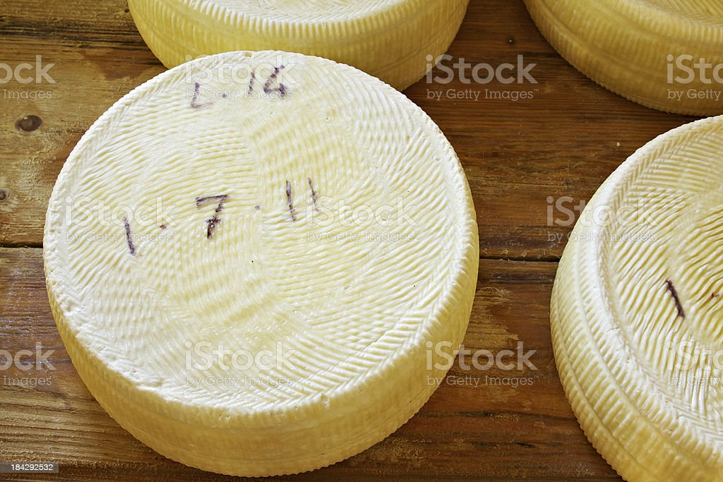 Asiago cheese aging in the factory royalty-free stock photo