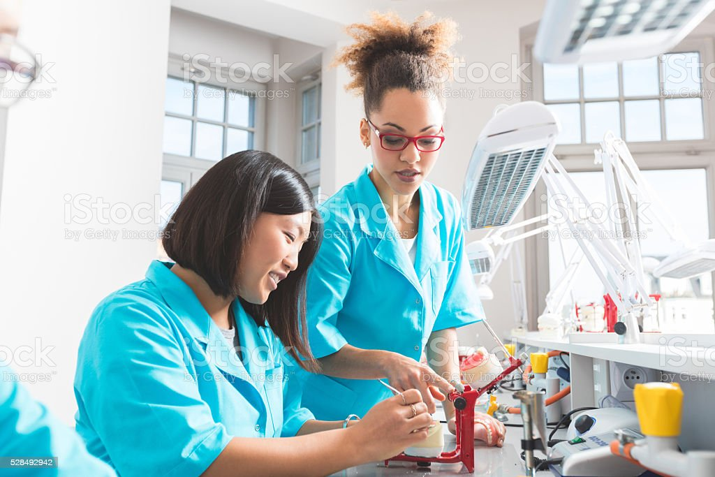 Asian and afro american students learning prosthetic dentistry stock photo