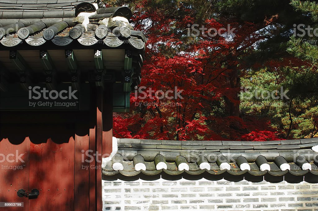 Asian Autumn stock photo
