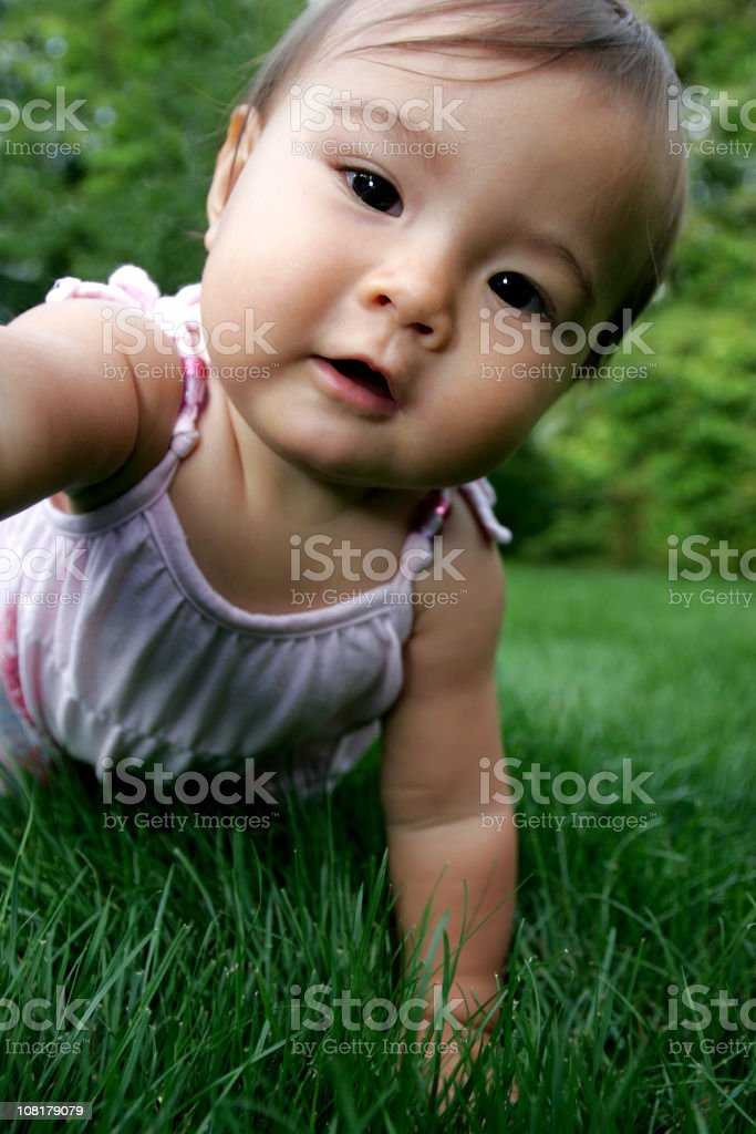 Asian Baby Girl Crawling in Grass royalty-free stock photo