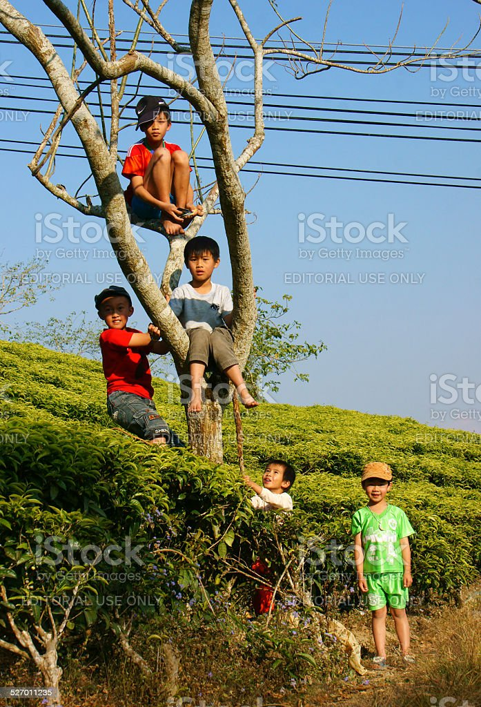 Asian children, active kid, outdoor activity stock photo