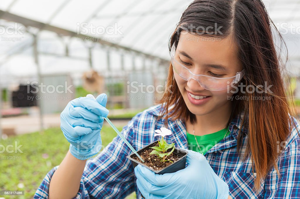 Asian college student working on botany stock photo