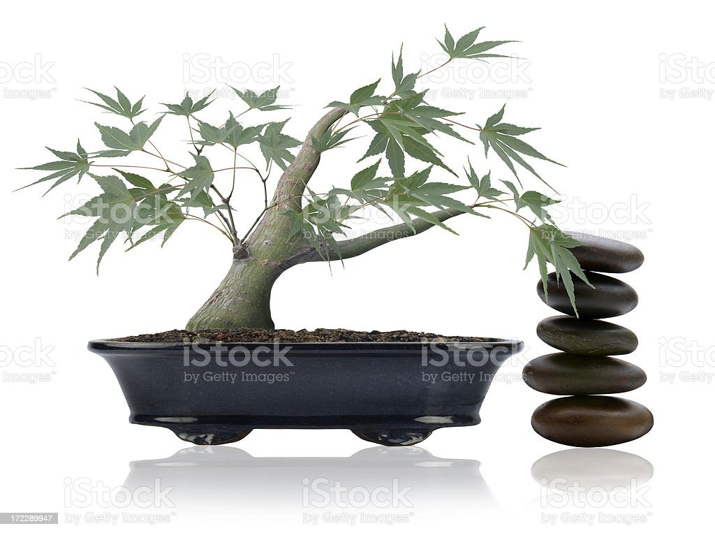 Asian Culture royalty-free stock photo