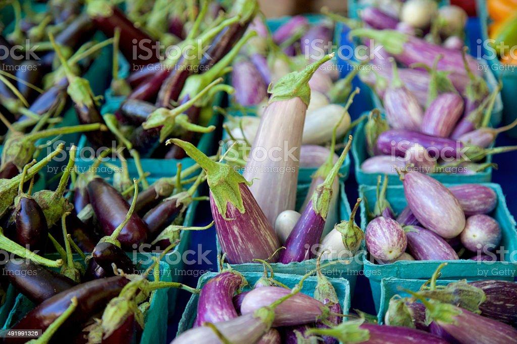 asian eggplant stock photo