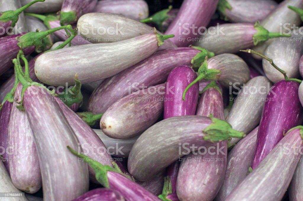 asian eggplants stock photo