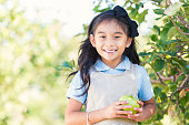Asian elementary student attending field trip at apple orchard