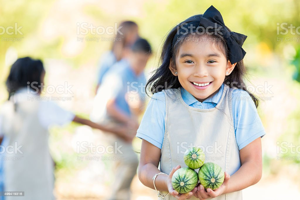 Asian elementary student holding zucchini from garden during field trip stock photo