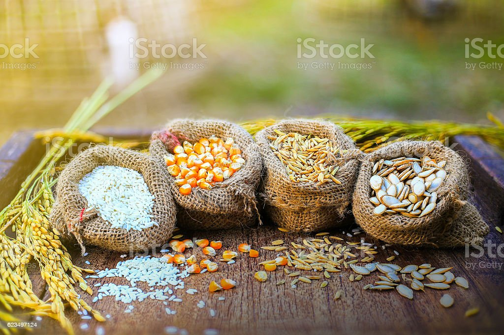 Asian food top view stock photo