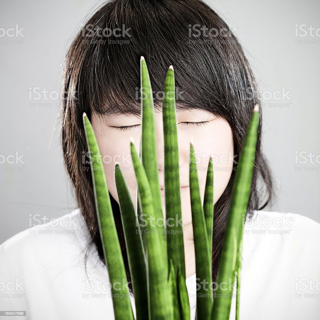 Asian girl behind a Sansevieria Cylindrica stock photo