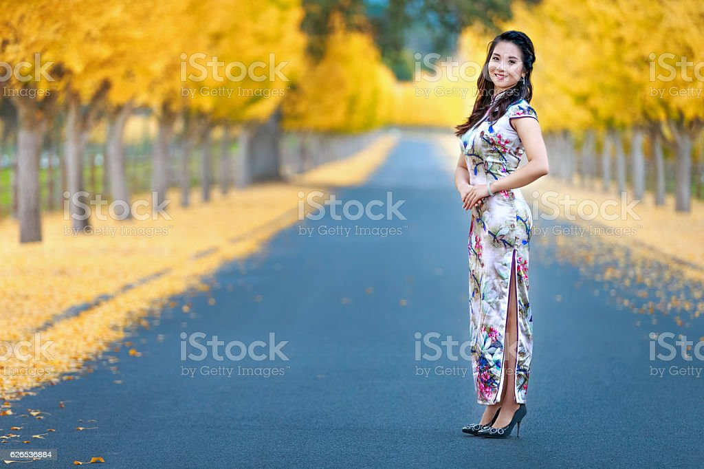 Asian Girl Enjoy the Autumn at Napa Valley, California stock photo