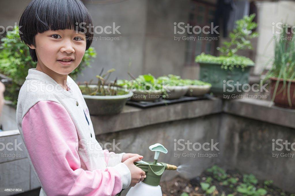 asian girl gardening stock photo