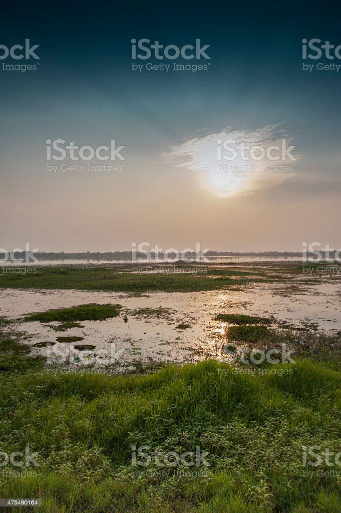 Asian lake with water plants sunbeams orange sun blue sky stock photo