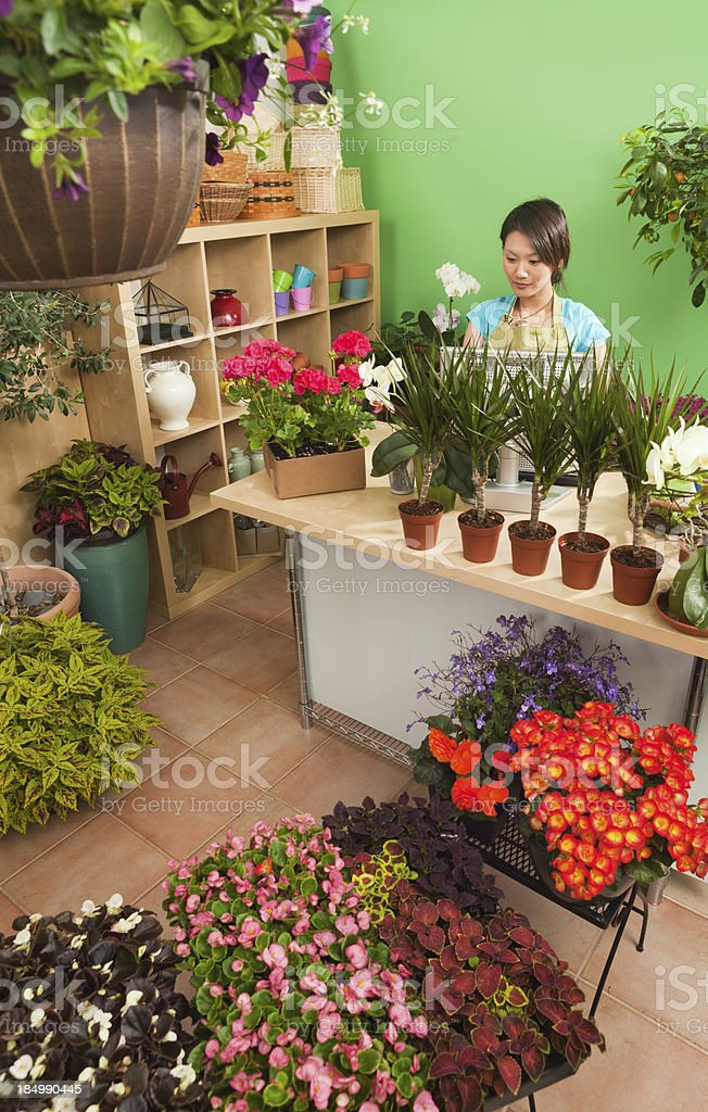 Asian Small Business Flower Shop Owner Entrepreneur Working in Store royalty-free stock photo