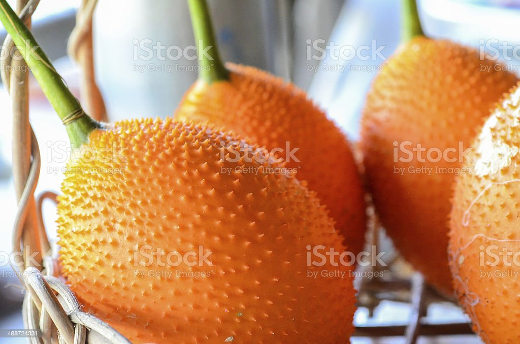 Asian sweet gourd stock photo