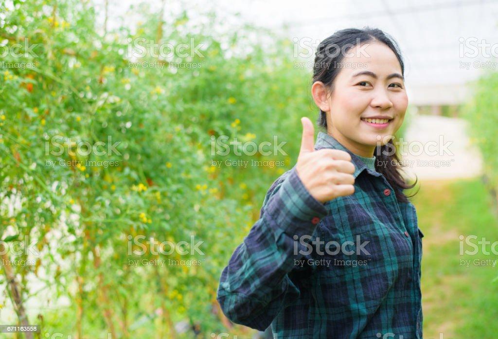 Asian woman farmer thumb up in greenhouse stock photo