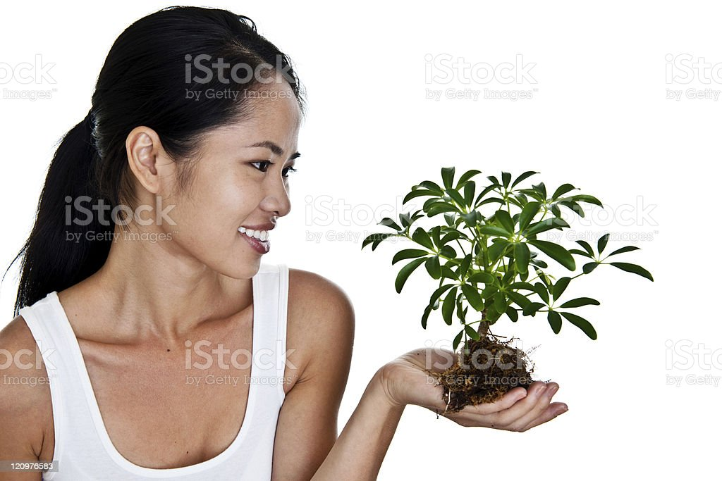 Asian woman holding a plant royalty-free stock photo