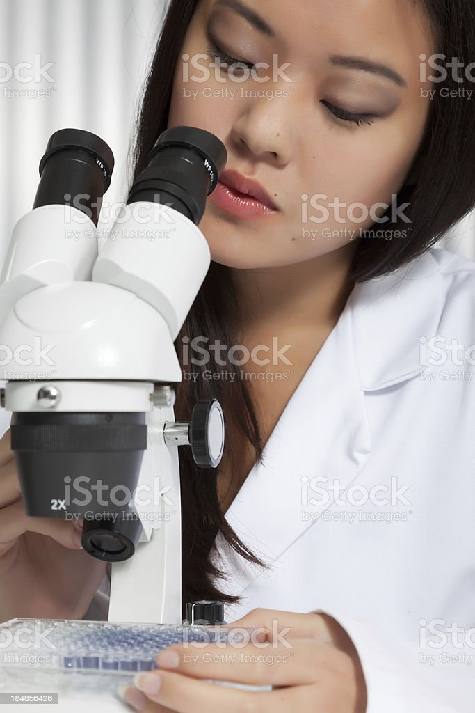 Asian woman looking through a microscope royalty-free stock photo