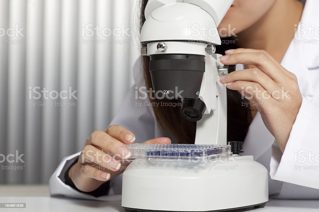 Asian woman looking through a microscope stock photo