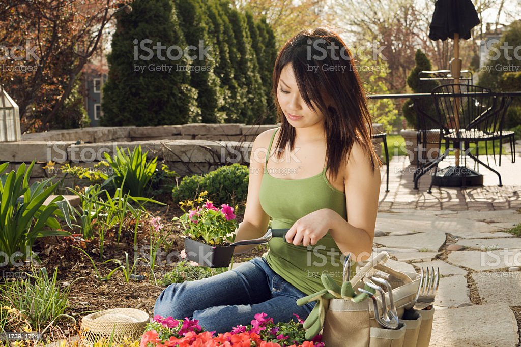 Asian Woman Planting Spring Flower Garden with Back Yard Tools royalty-free stock photo
