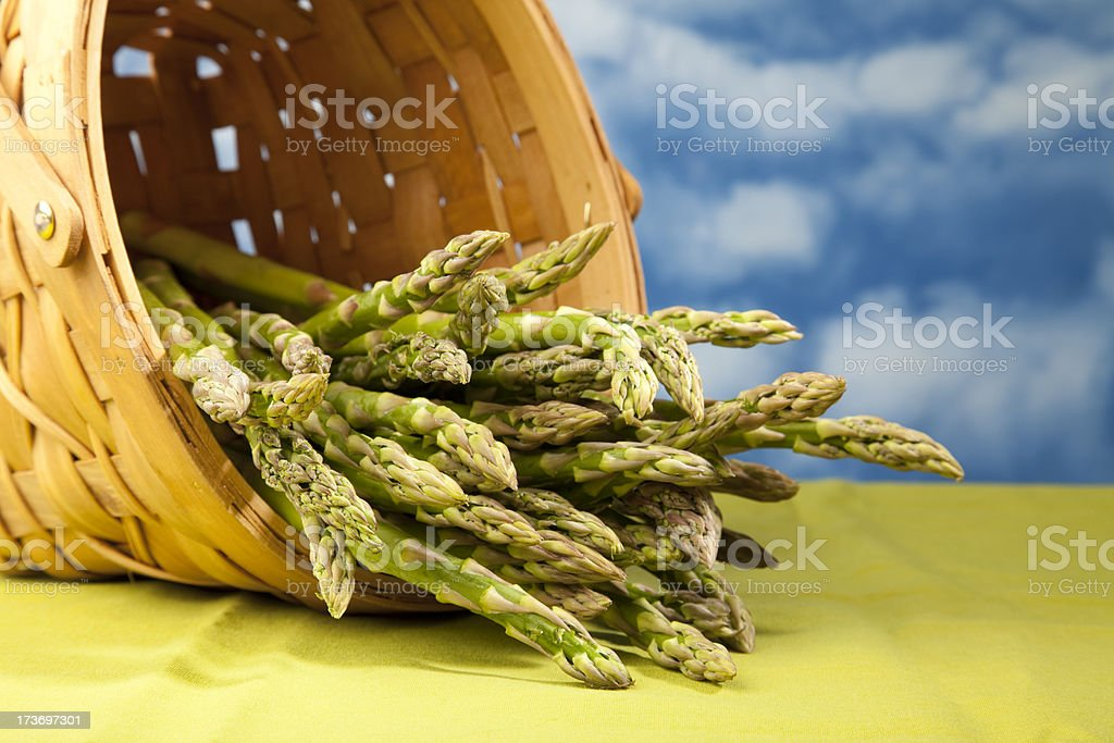 Asparagus Basket royalty-free stock photo