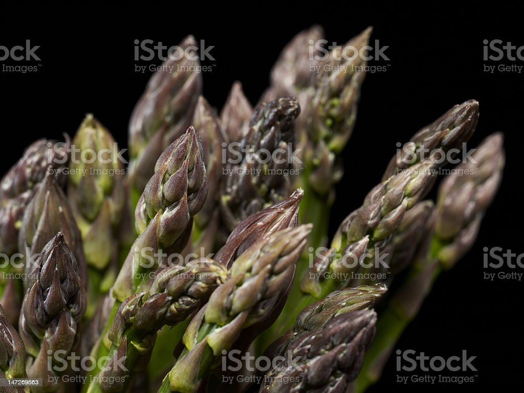 Asparagus heads against a black background royalty-free stock photo