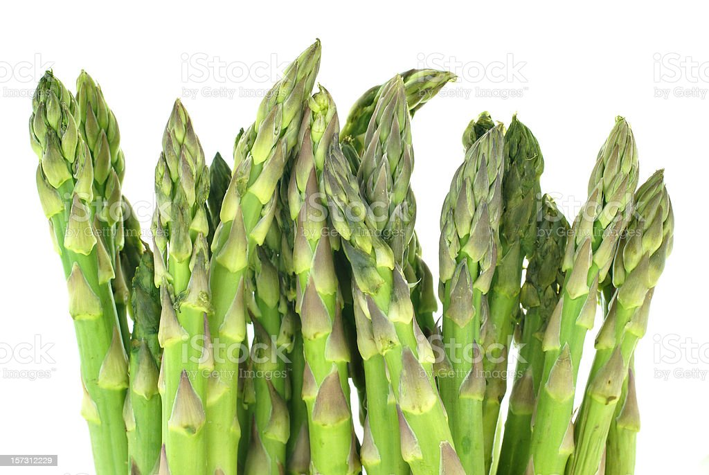asparagus isolated on white royalty-free stock photo