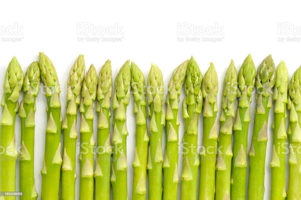 Asparagus Row royalty-free stock photo